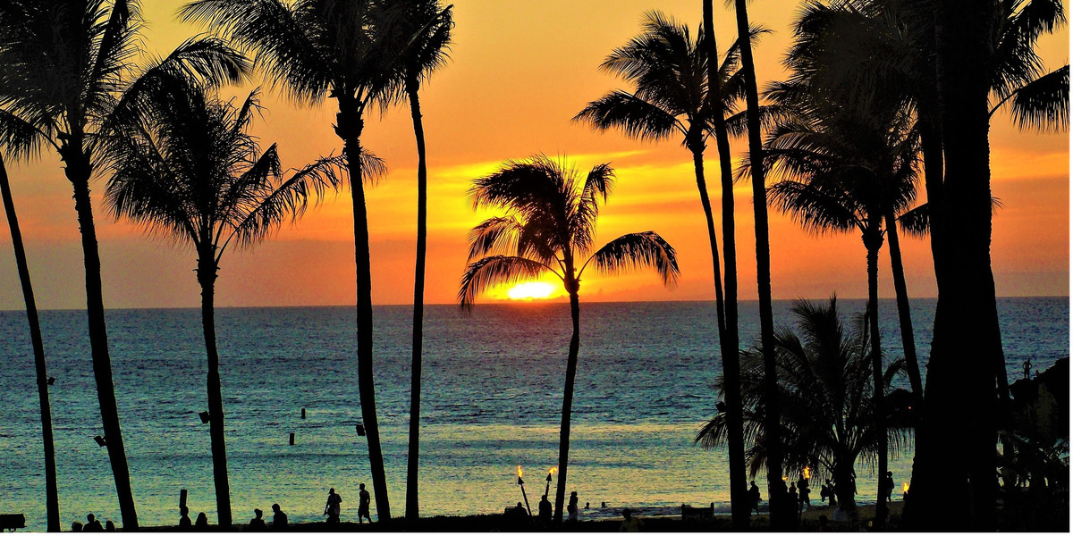 Arbeiten Auf Hawaii freiwilligenarbeit auf hawaii volunteering usa