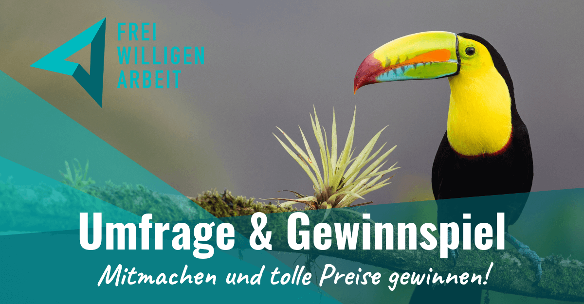 https://www.freiwilligenarbeit.de/system/forest_page/images/files/000/000/583/cropped_medium/FWA-Umfrage-2019.png?1565367516